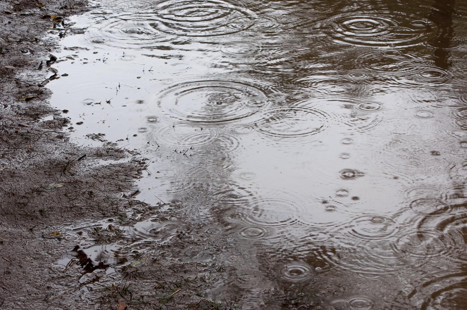 東京の降水量、最も多い月は6月?8月?9月?|お天気検定9月7日