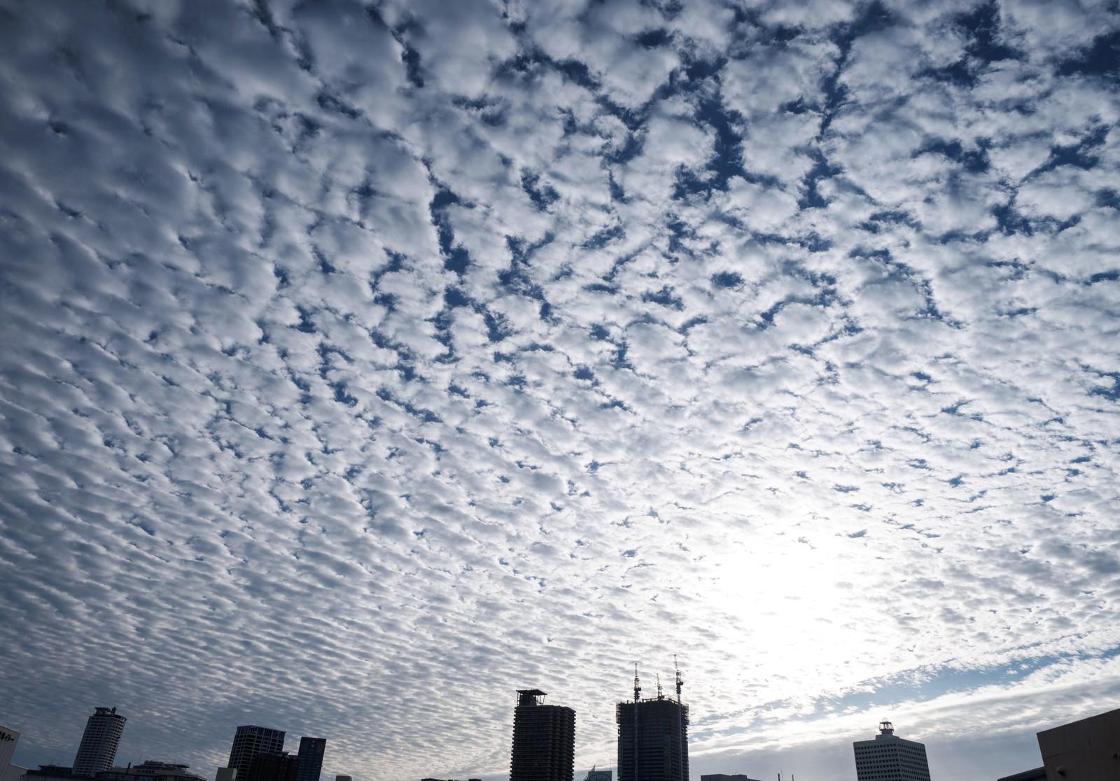 天気のことわざ、ひつじ雲が出ると翌日は雨?晴れ?雪?|お天気検定4月24日