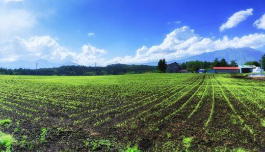 八十八夜、農家の目安は霜がなくなる?台風が来始める?|お天気検定5月2日