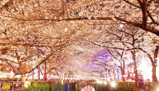 桜の花びらが水面を流れるのは花あられ?花いかだ?|お天気検定3月29日