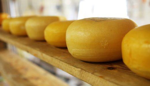 日本で最初のチーズは飛鳥?鎌倉?江戸?|お天気検定7月16日