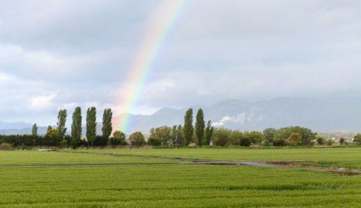 虹が出現しやすいのは太陽と反対側/太陽の方?|お天気検定1月17日