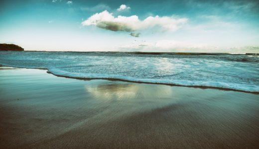 石牡丹と呼ばれる生物はヒトデ/イソギンチャク/サンゴ?|お天気検定1月14日