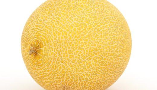 メロンの網目の役割は身を守る?栄養を運ぶ?傷を修復?|お天気検定9月18日