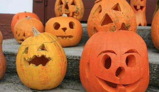かぼちゃの語源は蕪?人の名前?国の名前?|ことば検定12月21日