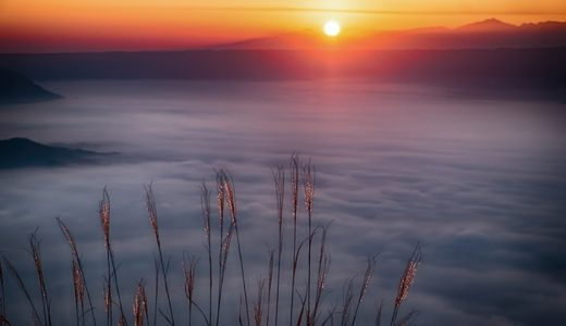 雲海ができやすい条件は近くに川や湖?平野?神社?|お天気検定6月28日
