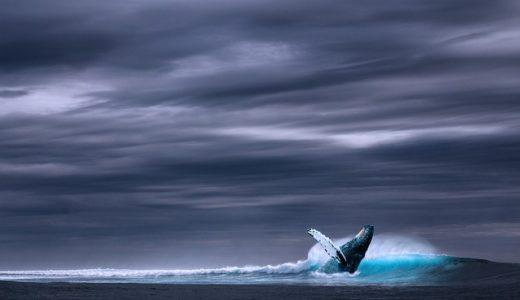 2隻ある海洋気象観測船の名前に入る文字は風/晴/雲?|お天気検定7月23日